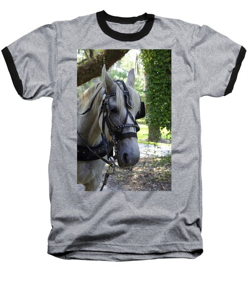 Jekyll Horse Baseball T-Shirt by Laurie Perry