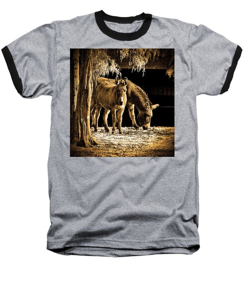 Jenny N Jack Baseball T-Shirt by Robert Geary
