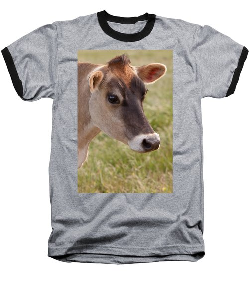 Jersey Cow Portrait Baseball T-Shirt
