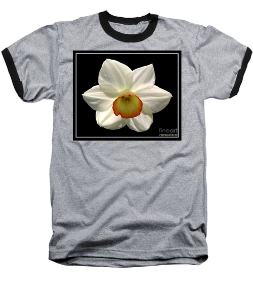 Baseball T-Shirt featuring the photograph Jonquil 1 by Rose Santuci-Sofranko