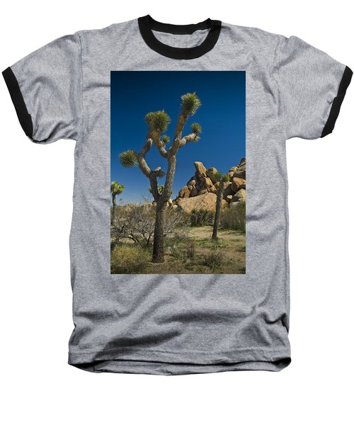 California Joshua Trees In Joshua Tree National Park By The Mojave Desert Baseball T-Shirt