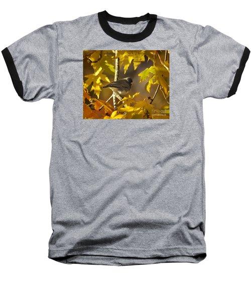Junco In Morning Light Baseball T-Shirt