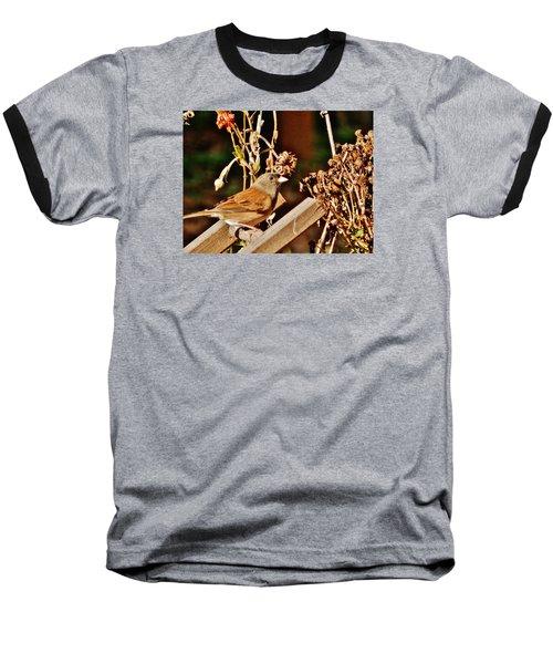 Baseball T-Shirt featuring the photograph Junco Jaunt 2 by VLee Watson