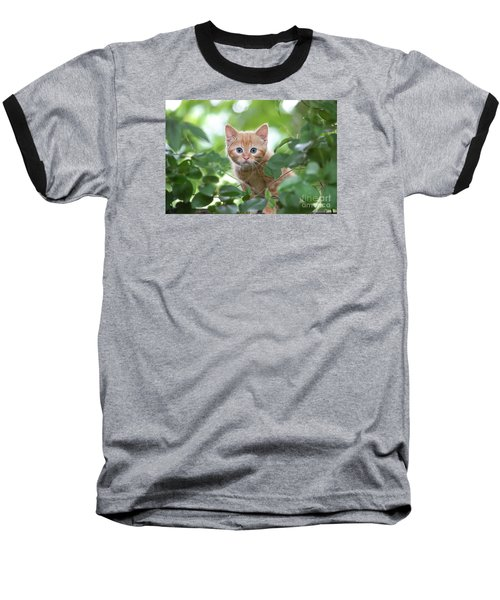 Jungle Kitty Baseball T-Shirt