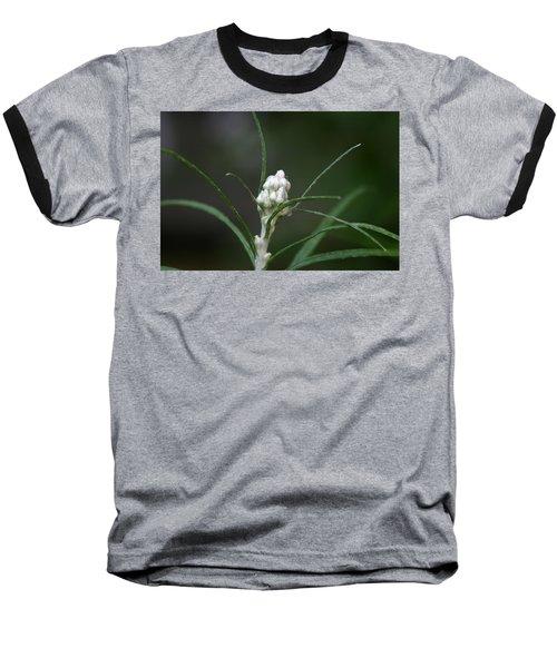 Just Budding Baseball T-Shirt by Denyse Duhaime