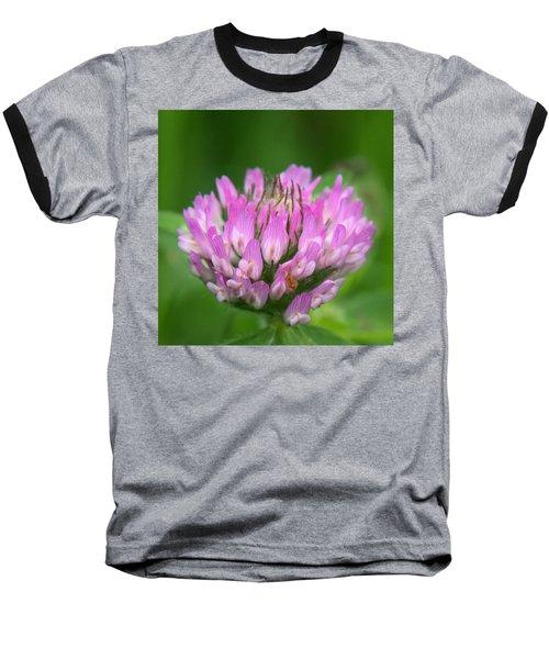 Just Clover Baseball T-Shirt