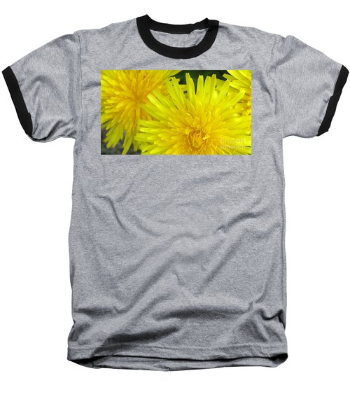 Just Dandy Baseball T-Shirt by Janice Westerberg
