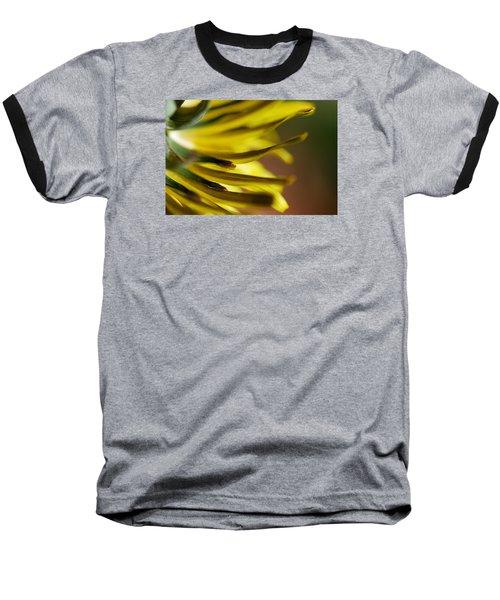 Just Dandy Baseball T-Shirt by Wendy Wilton