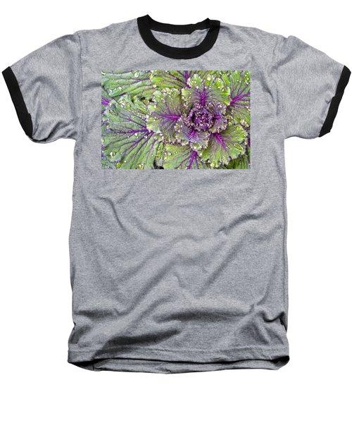 Kale Plant In The Rain Baseball T-Shirt