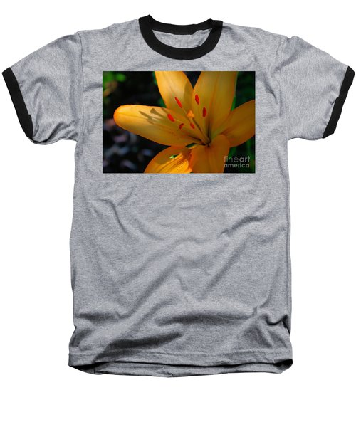 Baseball T-Shirt featuring the photograph Kenilworth Garden One by John S