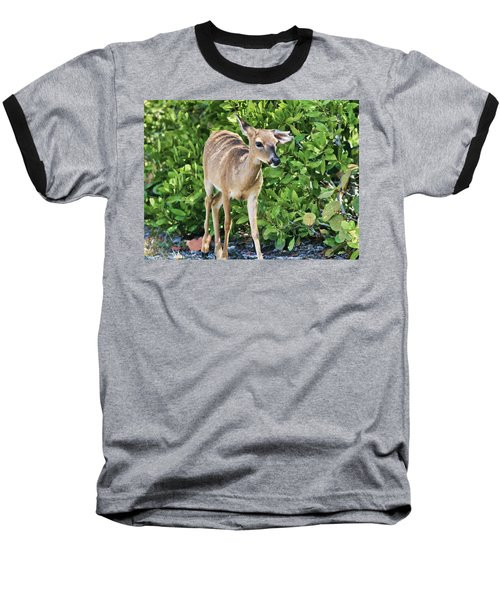 Key Deer Cuteness Baseball T-Shirt