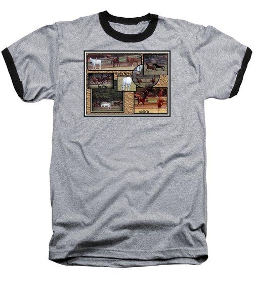 Horses Kickin It  Baseball T-Shirt by Bobbee Rickard