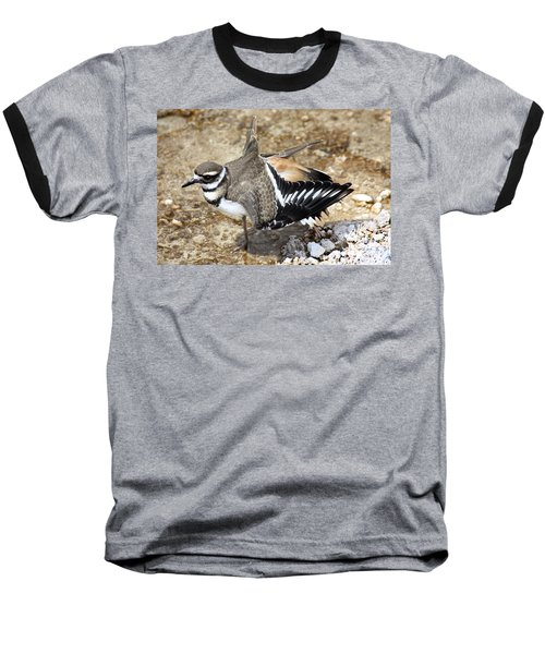 Killdeer Fakeout Baseball T-Shirt