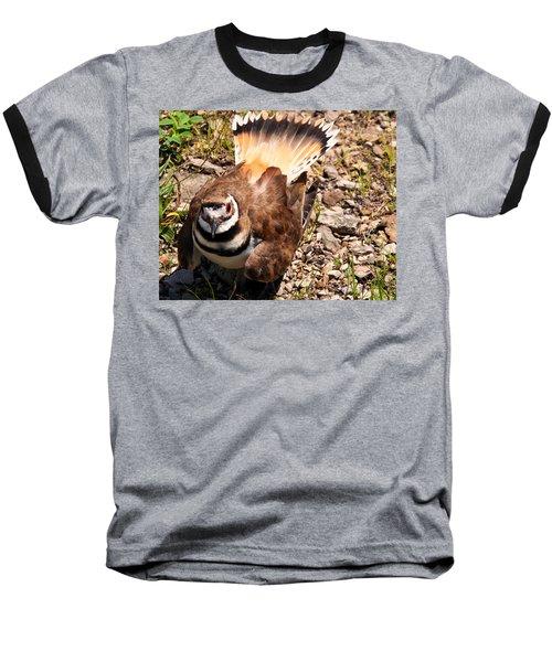Killdeer On Its Nest Baseball T-Shirt