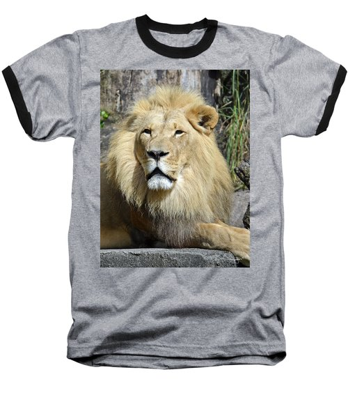 King Of Beasts Baseball T-Shirt