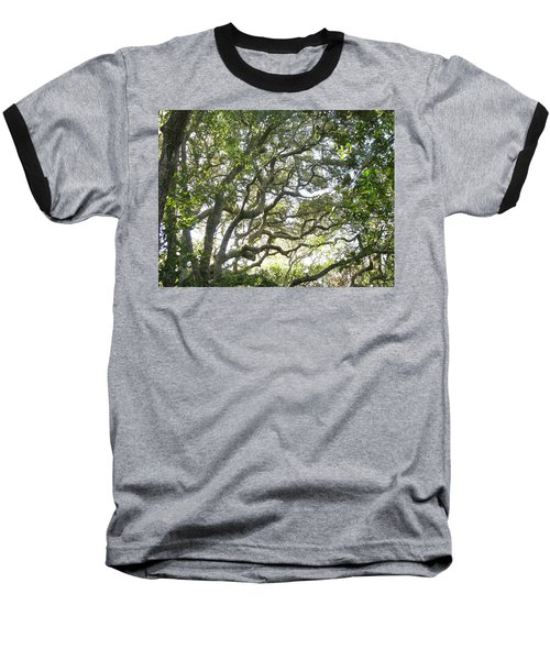 Knarly Oak Baseball T-Shirt