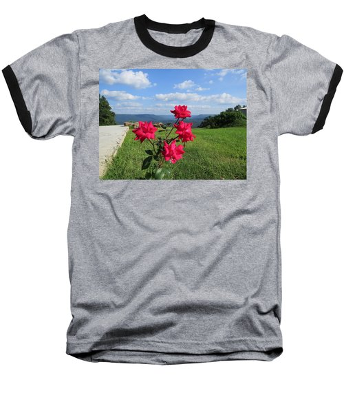 Knock Out Rose Baseball T-Shirt by Aaron Martens