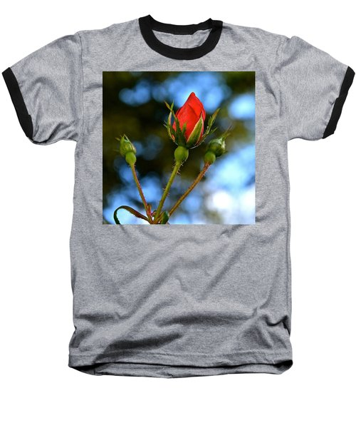 Knockout Rosebud Baseball T-Shirt