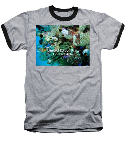 Komodo Island 5 Baseball T-Shirt by David Beebe