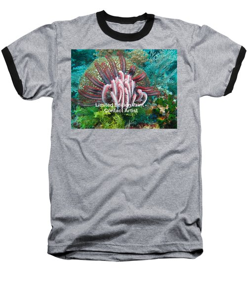 Komodo Island 6 Baseball T-Shirt by David Beebe