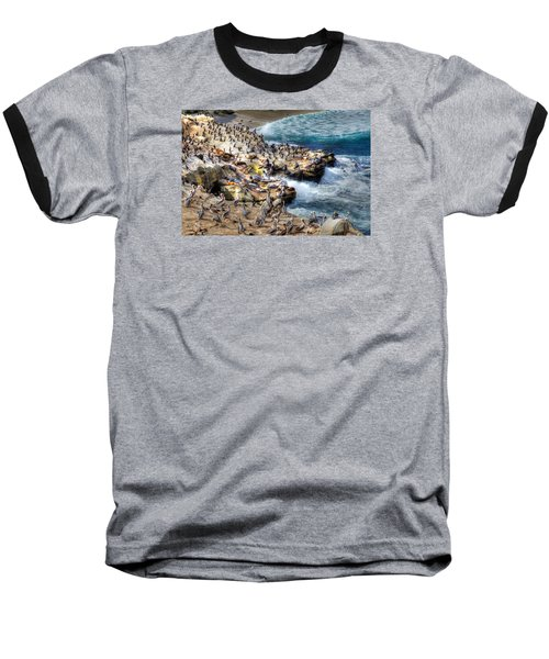 La Jolla Cove Wildlife Baseball T-Shirt