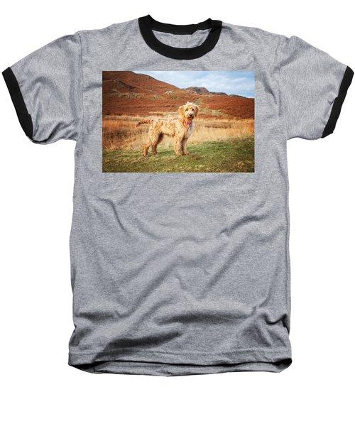 Labradoodle Puppy Baseball T-Shirt