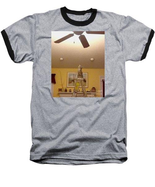 Ladder Cat Baseball T-Shirt by Stacy C Bottoms