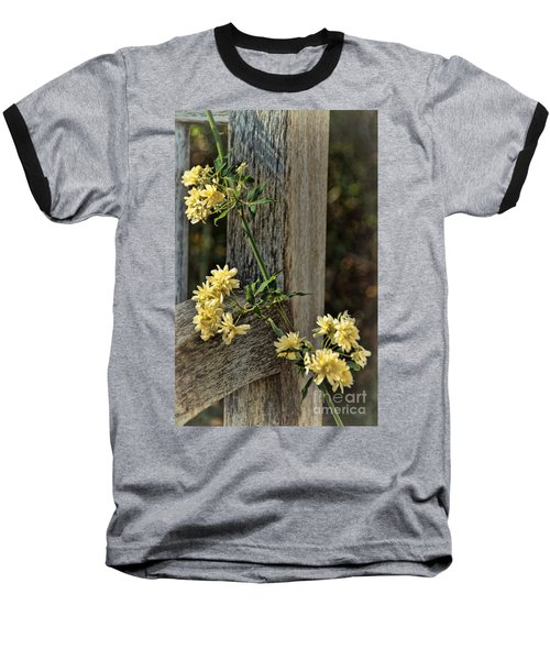 Baseball T-Shirt featuring the photograph Lady Banks Rose by Peggy Hughes
