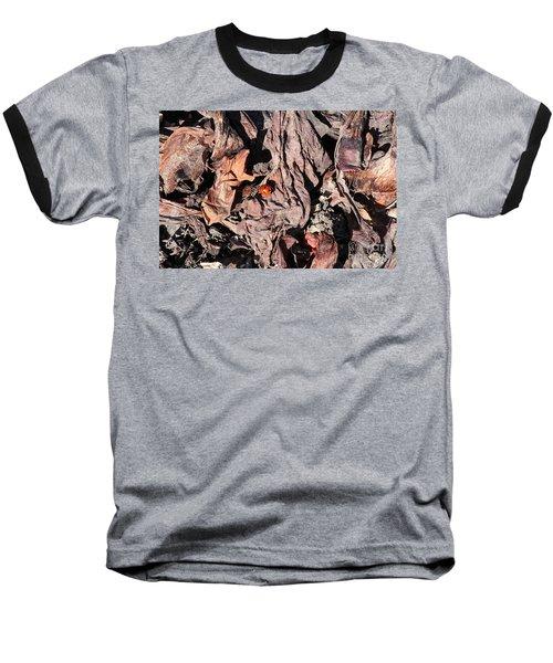 Lady Bug In Spring Baseball T-Shirt