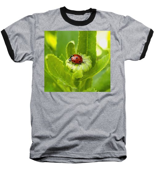 Lady Bug In The Garden Baseball T-Shirt