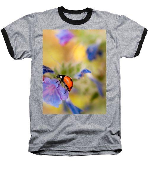 Ladybird Baseball T-Shirt by Meir Ezrachi