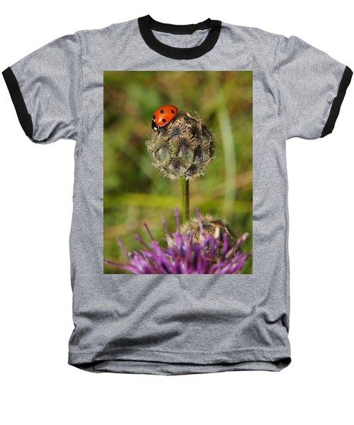 Ladybird Baseball T-Shirt by Ron Harpham