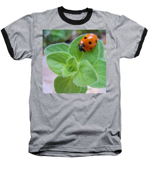 Baseball T-Shirt featuring the photograph Ladybug And Oregano by Robert ONeil