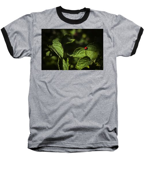 Baseball T-Shirt featuring the photograph Ladybug by Bradley R Youngberg