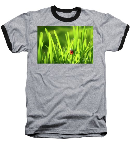 Ladybug In Grass Baseball T-Shirt