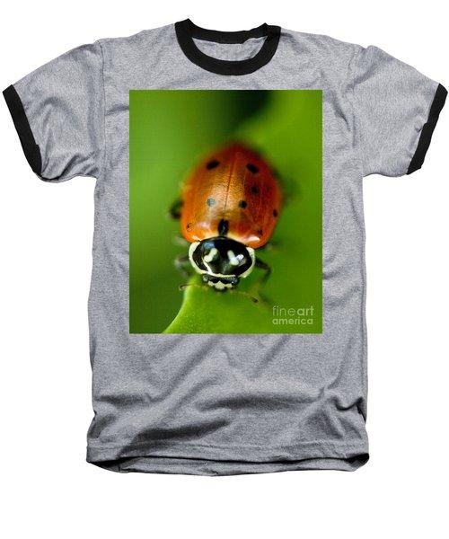Ladybug On Leaf Baseball T-Shirt