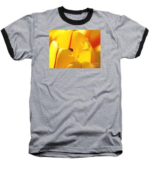 Ladybug - The Journey Baseball T-Shirt