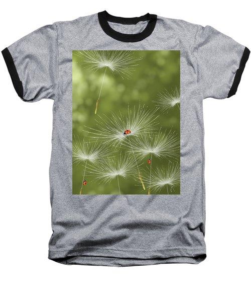 Ladybug Baseball T-Shirt by Veronica Minozzi
