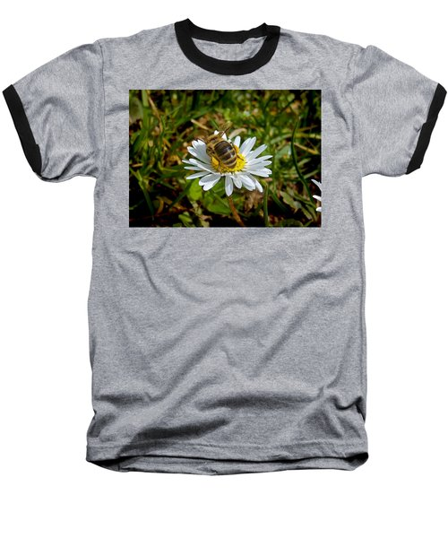 Baseball T-Shirt featuring the photograph Landed by Nina Ficur Feenan