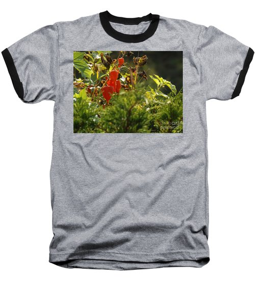 Baseball T-Shirt featuring the photograph Lantern Plant by Brenda Brown