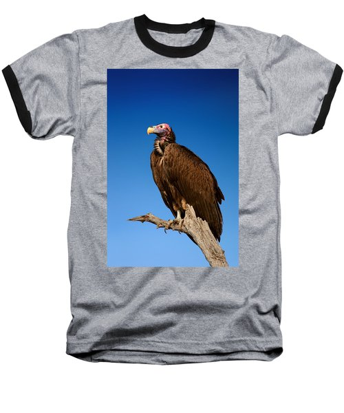 Lappetfaced Vulture Against Blue Sky Baseball T-Shirt
