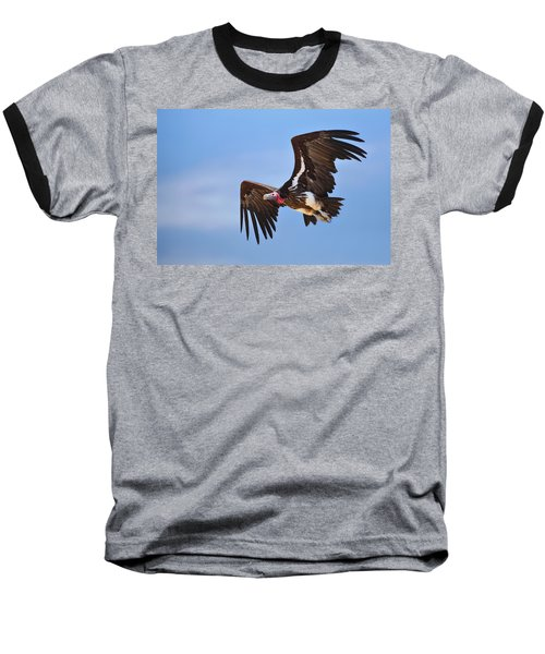 Lappetfaced Vulture Baseball T-Shirt by Johan Swanepoel