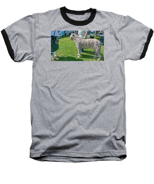 Large Irish Wolfhound Dog  Baseball T-Shirt