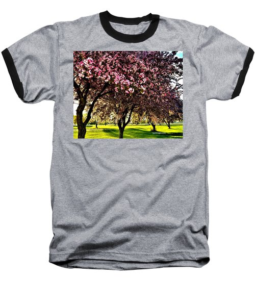 Late Afternoon At Lake Park Baseball T-Shirt