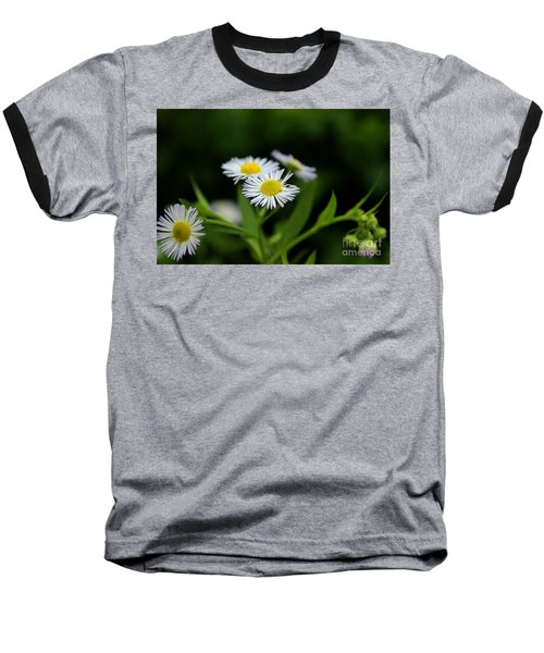 Late Summer Bloom Baseball T-Shirt by Melissa Petrey