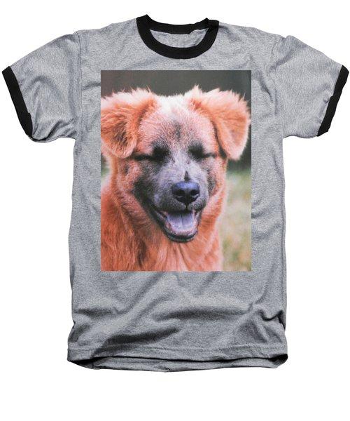 Laughing Dog Baseball T-Shirt by Belinda Lee