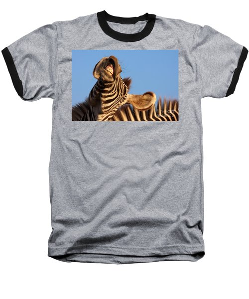 Laughing Zebra Baseball T-Shirt by Nick  Biemans