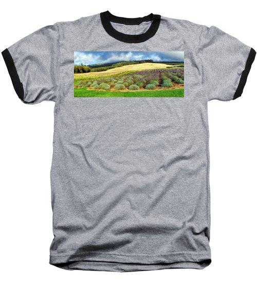 Lavendar 5 Baseball T-Shirt by Dawn Eshelman