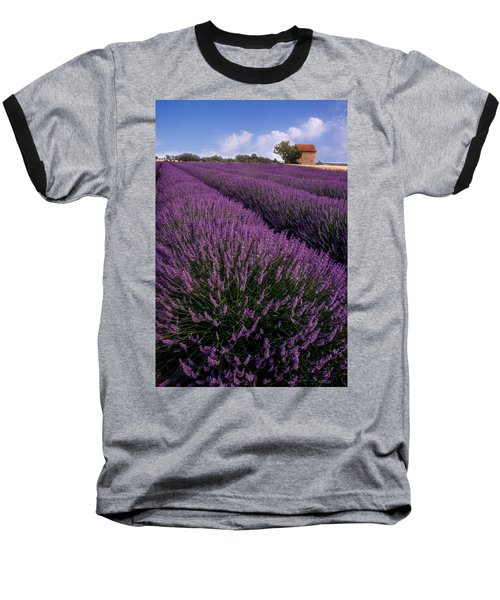 Lavender In Provence Baseball T-Shirt