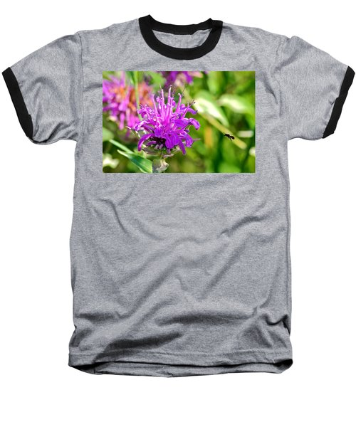 Baseball T-Shirt featuring the photograph Lavender Pink Bee Balm Wild Bergamot by Karon Melillo DeVega